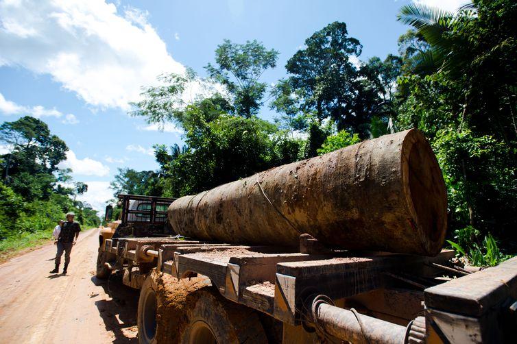 Caminhão com tora de madeira retirada perto da Terra Indígena Kawahiva do Rio Pardo é parado por agentes da Funai (Foto: Marcelo Camargo/Agência Brasil)