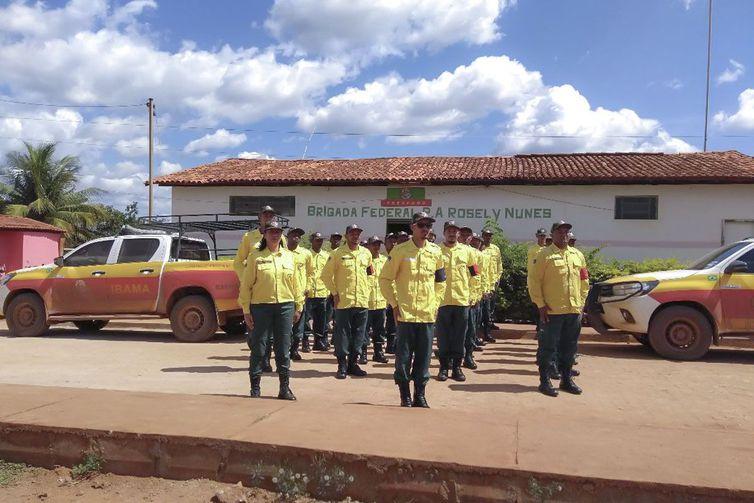 Brigada Federal de prevenção e combate a incêndio florestal