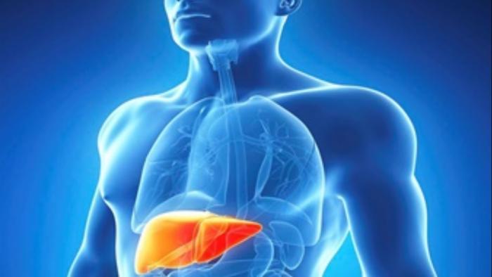 Pesquisa de Araraquara cria molécula que elimina fases do vírus da hepatite C - 1