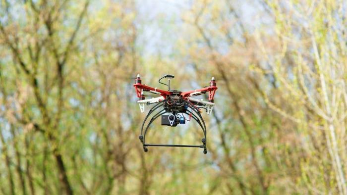 Startups combatem o aquecimento global fazendo reflorestamento com drones - 1