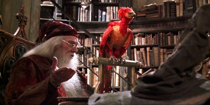 Tudo o que não faz sentido em Harry Potter - 1