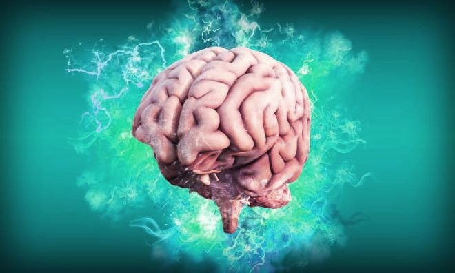 Quantos anos tem seu cérebro? Cientistas treinam IA para revelar idade cerebral - 2