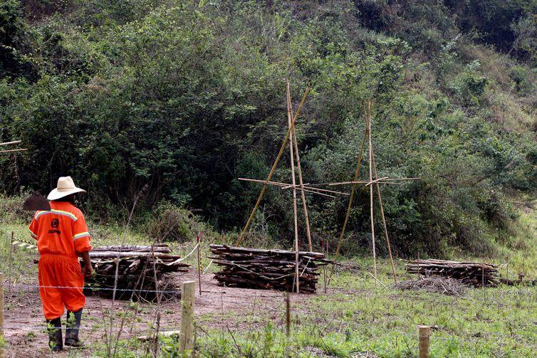 Experimento de restauração florestal em área sob influência de rejeitos da barragem de Fundão, trecho do rio Gualaxo do Norte, um dos principais afluentes do rio Doce, que abrange os municípios de Mariana, Ouro Preto e Barra Longa