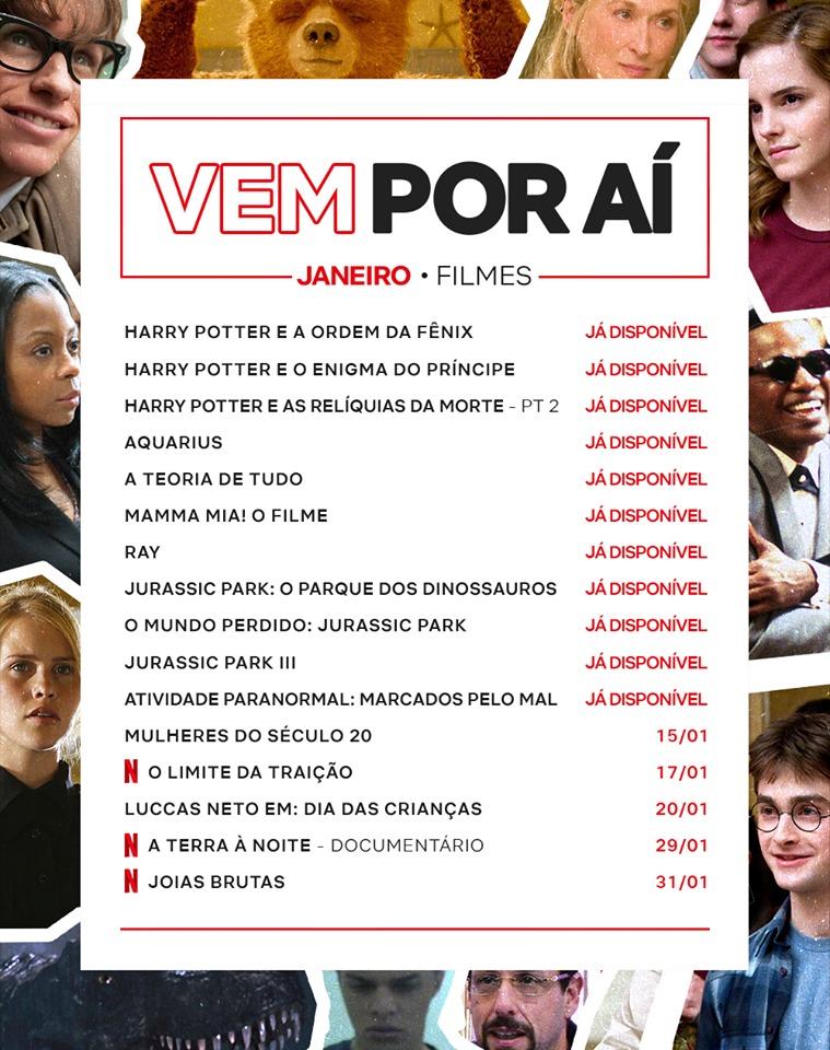 Com Harry Potter, Netflix mostra os principais lançamentos de janeiro aos assinantes - 2