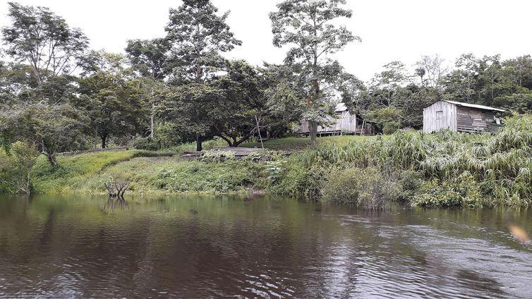 Pesquisa descobre ilhas construídas por indígenas na Amazônia
