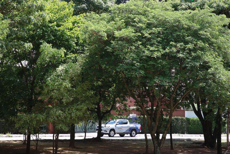 A Prefeitura de São Paulo, por meio da Divisão de Arborização Urbana (DAU) da Secretaria do Verde e do Meio Ambiente , inaugurou um projeto-piloto de escaneamento das árvores.