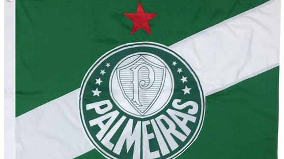 9 acessórios que todo torcedor do Palmeiras precisa ter - 4