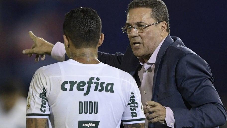 Melhor reforço do Palmeiras para 2020 está no banco de reservas - 1