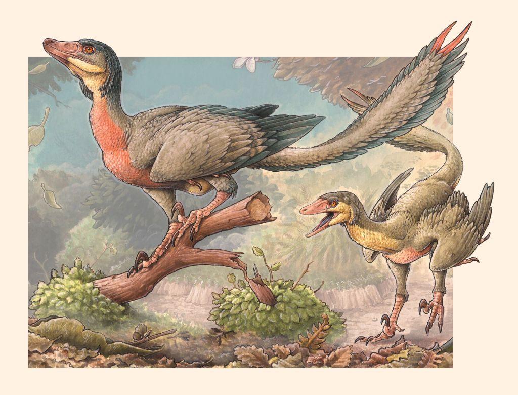 Dinossauro-pássaro que viveu há 90 milhões de anos é descoberto na Patagônia - 2