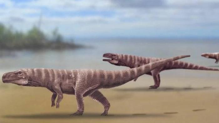 Pegadas fossilizadas: crocodilos bípedes viveram na Terra há 120 bilhões de anos - 1