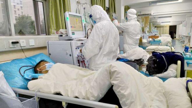 COVID-19 no BR | Plataforma abriga dados de mais de 177 mil pacientes e exames - 2