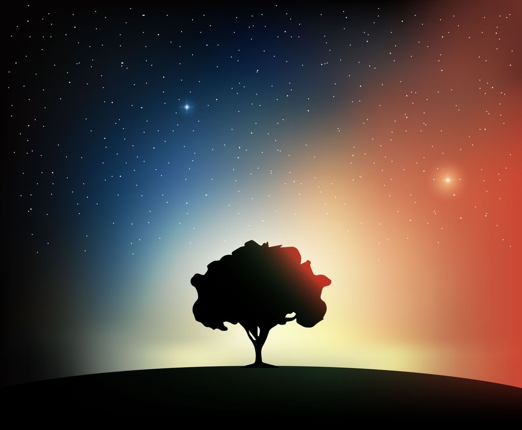 Deuses da astronomia | Como os indígenas brasileiros interpretavam os astros - 2