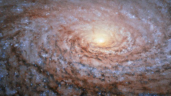 Usando telescópio amador, astrônomos encontram 5 galáxias anãs ao redor da M63 - 1