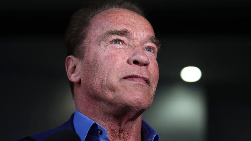 Arnold Schwarzenegger e ator de Stranger Things tem filhos secretos - 7