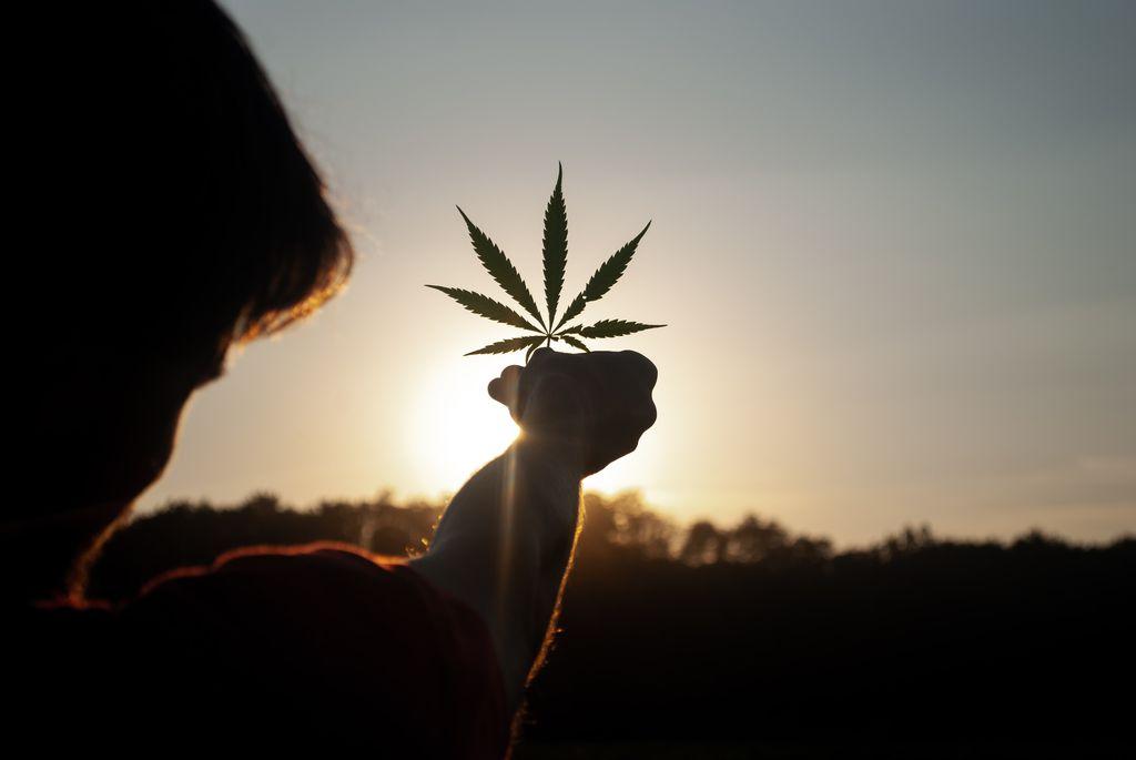 Como a cannabis pode ajudar no tratamento da COVID-19? - 4