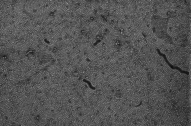 Grafeno pode superar fibras ópticas atuais no ramo das telecomunicações - 2