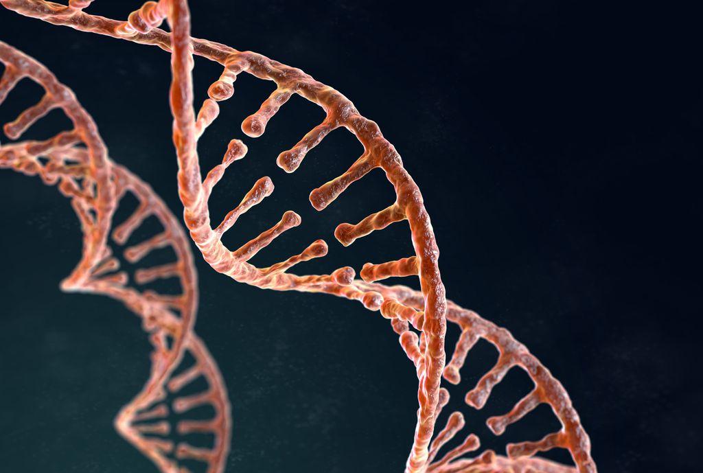 Genoma humano é sequenciado de forma completa pela primeira vez, diz estudo - 2