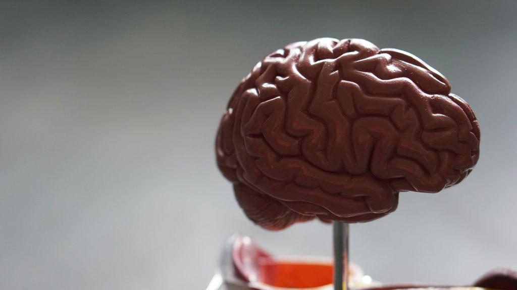 Esquizofrenia: o que é, quais são os sintomas e como tratar - 2