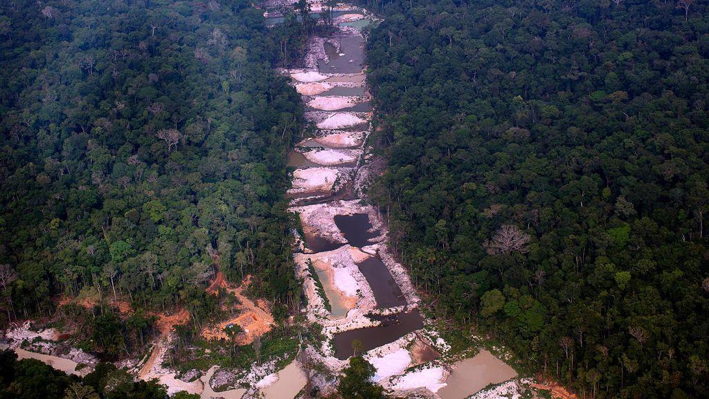 Indígenas usam sistema de alerta precoce para combater desmatamento na Amazônia - 3