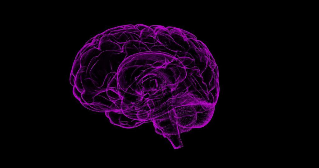 Longas viagens ao espaço podem elevar risco de danos cerebrais, aponta estudo - 3